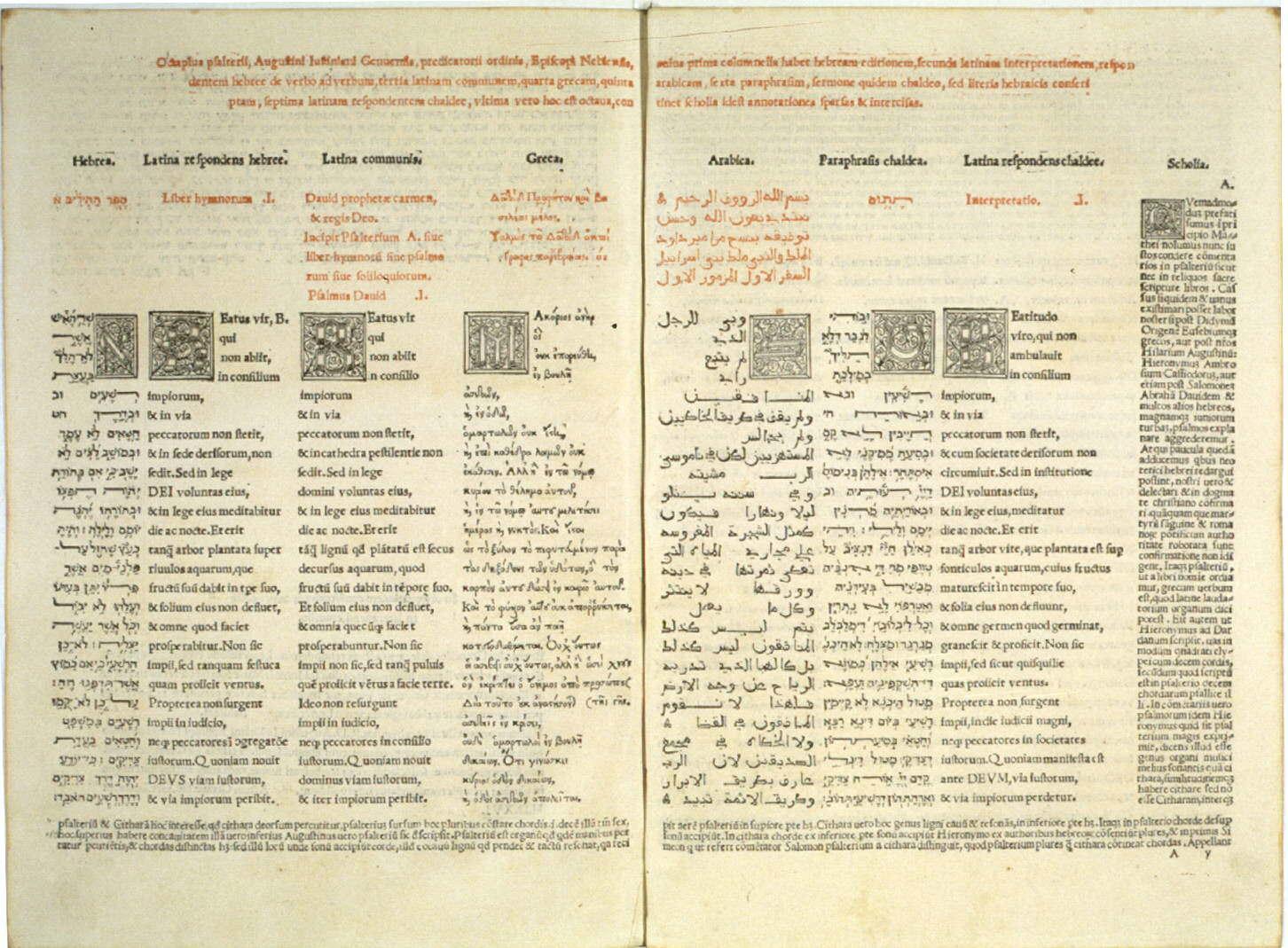 bibbia giustiniani